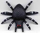 L'Araignée dégringolante